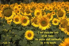 Praise continually
