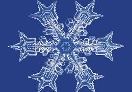 snowflake real on blue